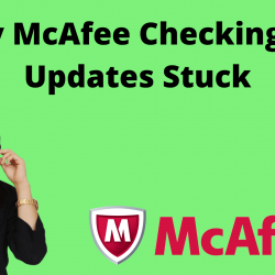 Why McAfee Checking For Updates Stuck